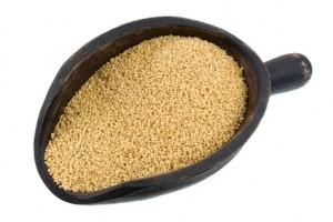 amaranto, maíz, frijol, asociación civil, construcción de proteínas musculares, Contiene Triptófano, Péptidos, Efecto Prebiótico, antioxidante, Hipertensión, Diabetes,