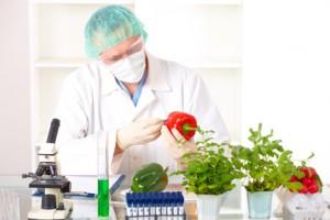 progreso científico en el área de alimentos, mejoramiento de la calidad de vida de los mexicanos,
