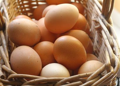 comida de alta calidad, vitaminas, minerales, desarrollo de las funciones del cerebro, huevo alimento esencial,