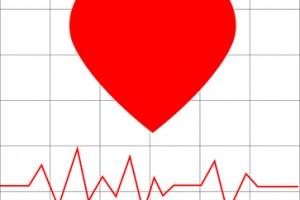 multiples quehaceres, rol importante, problema de salud publica, ejercicio de vital importancia, circulación, Sociedad Mexicana de Cardiología,diabetes, obesidad, tabaquismo, sedentarismo, trastornos de coagulación sanguínea,
