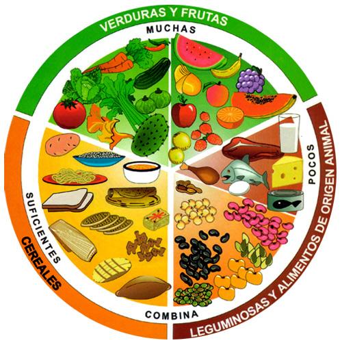 plato del buen comer, dieta nutritiva, beneficios a tu salud,Frutas y verduras, leguminosas, alimentos de origen animal, proteínas al organismo, cereales,  buena alimentación, alimentación equilibrada,