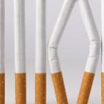 Se crea el observatorio ciudadano de políticas para el control del tabaco en México.