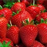 Las fresas son grandiosas para la salud.