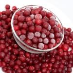 arándano, Ocean Spray Cranberries, padecer una enfermedad, sucralosa, infección en las vías urinarias, productos endulzantes, antioxidantes, proantocianidinas, alimentación saludable.
