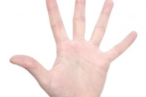 transplante de mano,recuperar su movilidad,estabilización ósea, sistema inmune, recuperación de movilidad, sensibilidad, coordinación, no cuenta con sus huellas dactilares,