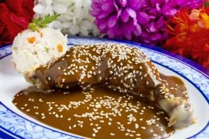 platillos mexicanos de más tradición,hogares mexicanos, pérdida de la tradición culinaria de los mexicanos,diversos tipos de moles,