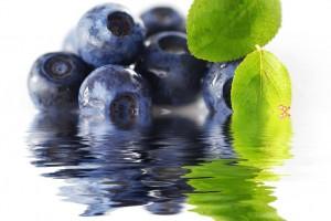 Té de blueberry fresco. La mejor manera de apagar tu sed.