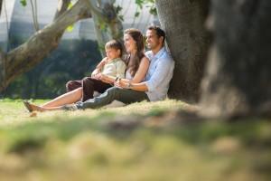 Una nueva investigación ha demostrado que poder ver los espacios verdes desde su hogar, se asocia con la reducción de los antojos de alcohol, cigarrillos y alimentos dañinos.