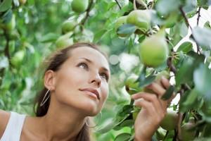 Las peras también aportan cantidades importantes de vitamina C.