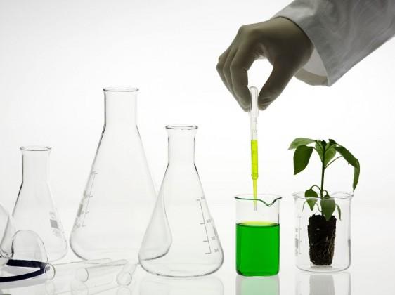 La industria de la biotecnología en México tiene potencial de crecimiento