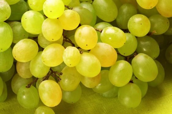 existen más de 50 variedades diferentes de uvas que pueden comerse crudas y cerca de 60 variedades utilizadas para la elaboración de vino. Cada tipo de uva es ligeramente diferente en términos de nutrientes y todas las variedades han mostrado tener algún efecto positivo en la salud. Imagen: Depositphotos
