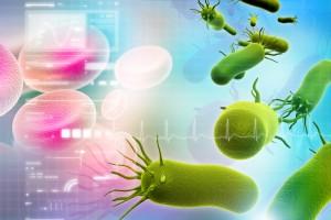 Los microorganismos se utilizan para la elaboración de fármacos, entre otras cosas.