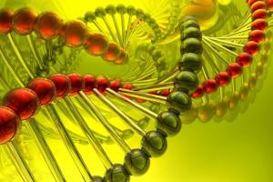 Biotech Summit 2019 dará a conocer avances en biotecnología para mejorar la calidad de vida de pacientes con enfermedades óseas.