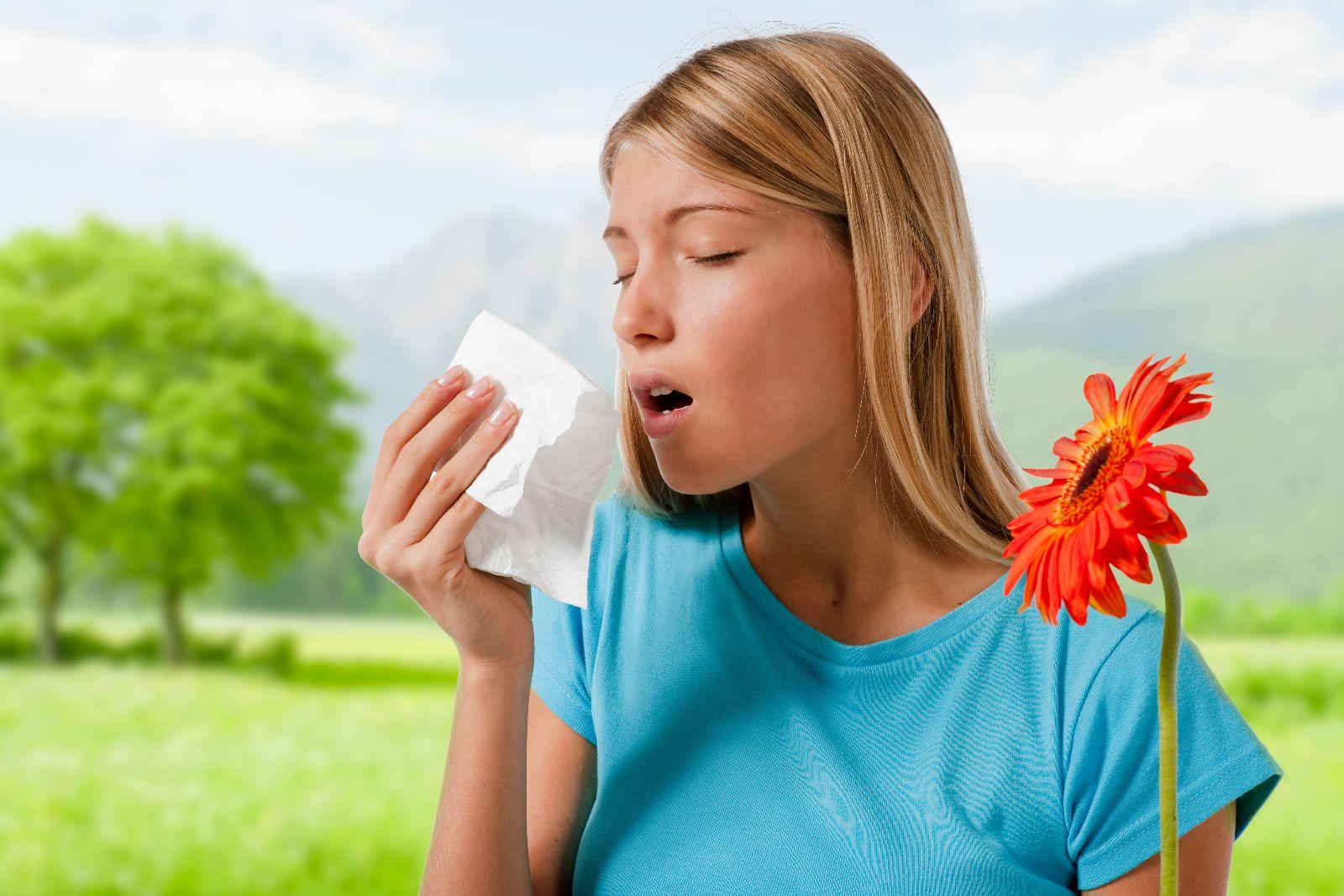 Resultado de imagen para alergenos en el hogar
