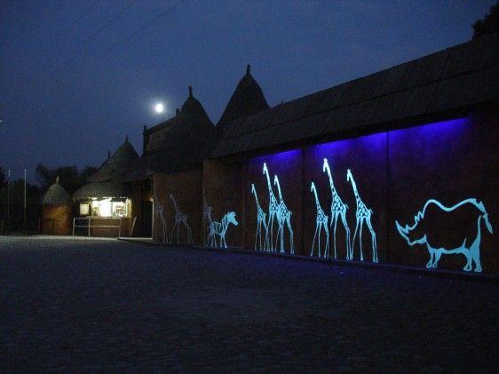 Iluminación nocturna con animales africanos