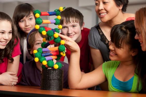niños jugando con un modelo a escala de ADN