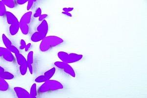 Mariposas moradas en fondo blanco