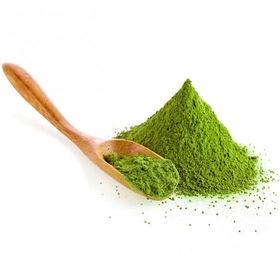 té verde con hojas aisladas sobre fondo blanco