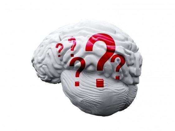 ulustración de un cerebro blanco con signos de interrogación rojos