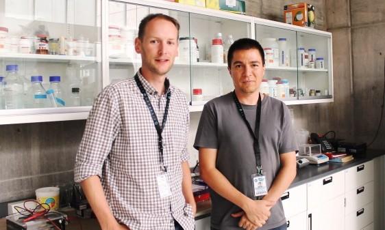 ARN VEGETAL Los investigadores Stefan de Folter y Ricardo A. Chávez, del Langebio en Irapuato, analizaron fragmentos cortos de ARN de 3 epecies de algas y 31 de plantas