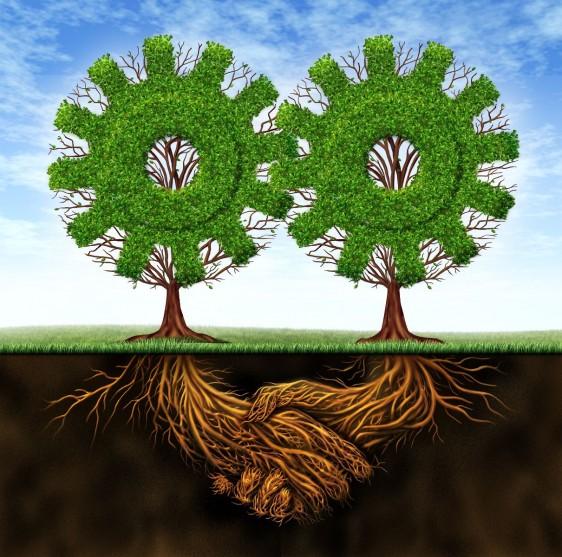 Ilustración de os arboles en forma de engranes con raices en forma de manos que trabajan juntos