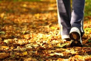 Acercamiento al tenis de una persona caminando en un camino lleno de hojas secas en un bosque