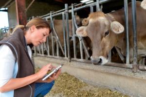 Veterinaria apuntando datos con una vaca al lado
