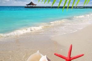 México posee un extenso litoral con más de 11 mil kilómetros de playas.