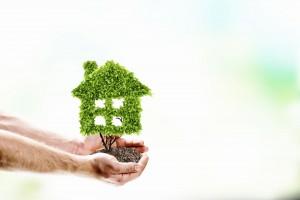 Manos sosteniendo arbusto en forma de casa
