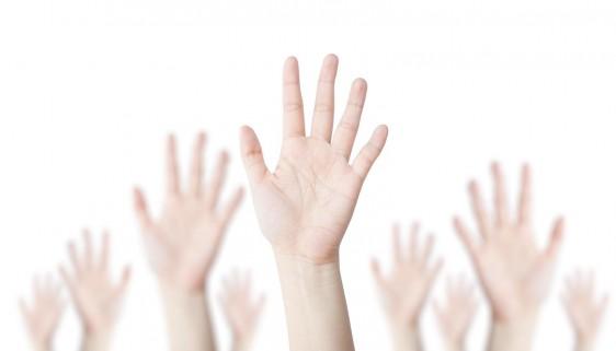 palmas de manos femeninas en un fondo blanco