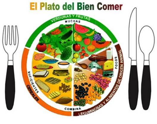 Ilustración de El Plato del Bien Comer con frutas y verduras, cereales, leguminosas y productos del origen animal.