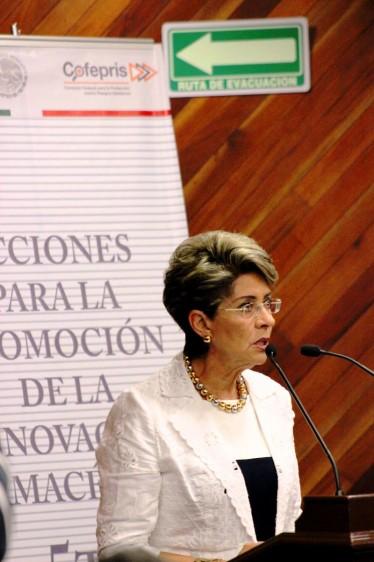 Mercedes Juan dando dscurso
