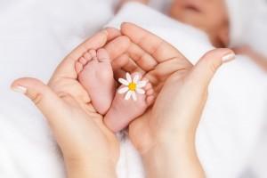 Manos de mujer sostenido los pies de un bebe que tiene una flor de margarita