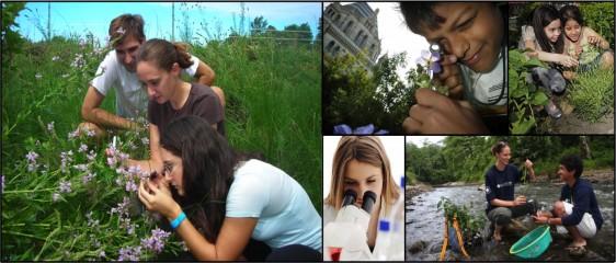 Collage de imagenes de jovenes observando la naturaleza