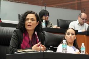 Mariana Gómez del Campo Gurza