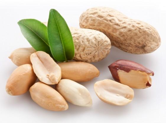 Las oleaginosas se han ligado a patrones de alimentación con resultados positivos en la salud por sus características nutrimentales.
