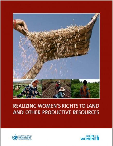 Mosaico de imagenes de mujeres en actividades en l campo