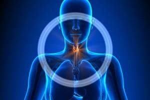 Ilustración con un cuerpo de mujer con un circulo en el cuello para indicar la ubicación de la tiroides