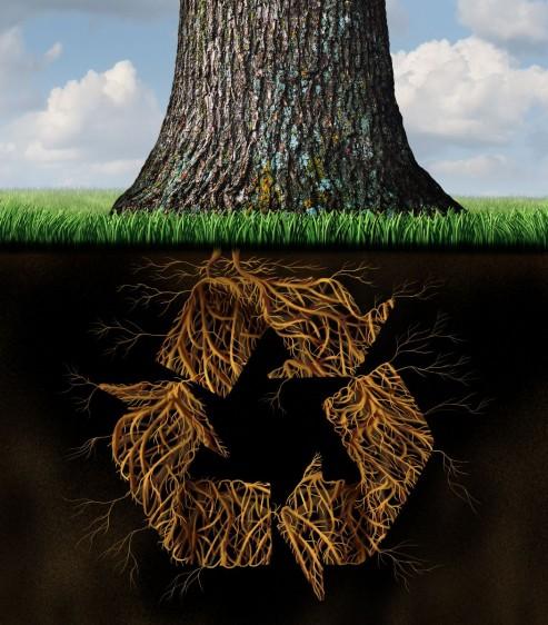 Ilustración de un árbol con raíces en forma de signo de reciclar