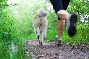 Acercamiento a una mujer corrindo en un parque con un perro