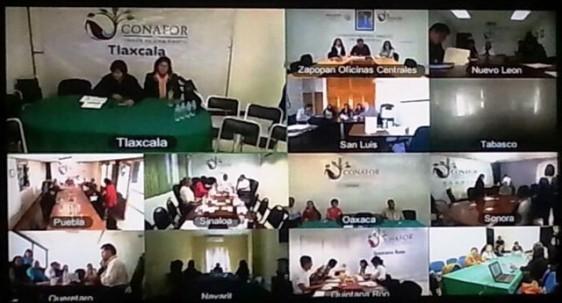 INMUJERES-20150128-VIDEOCONFERENCIA
