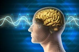 Ilustración de una electroencefalografía y la vaneza transparente de una persona para dejar ver el cerebro