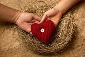 Mans de un hombre y una mujer sostienen un corazón de estambre sobre un nido