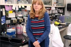 Ana Lorena Gutiérrez Escolano en su laboratorio