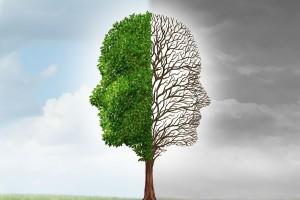 Ilustración de árbol de un lado verde y frondoso del otro lado sin hojas y gris