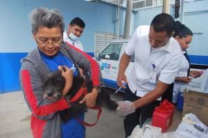 Mujer sostiene a su perro mientras el veterinario aplica una vacuna
