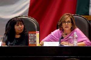 María de la Luz Aguilar Torres y Martha Lucía Mícher Camarena