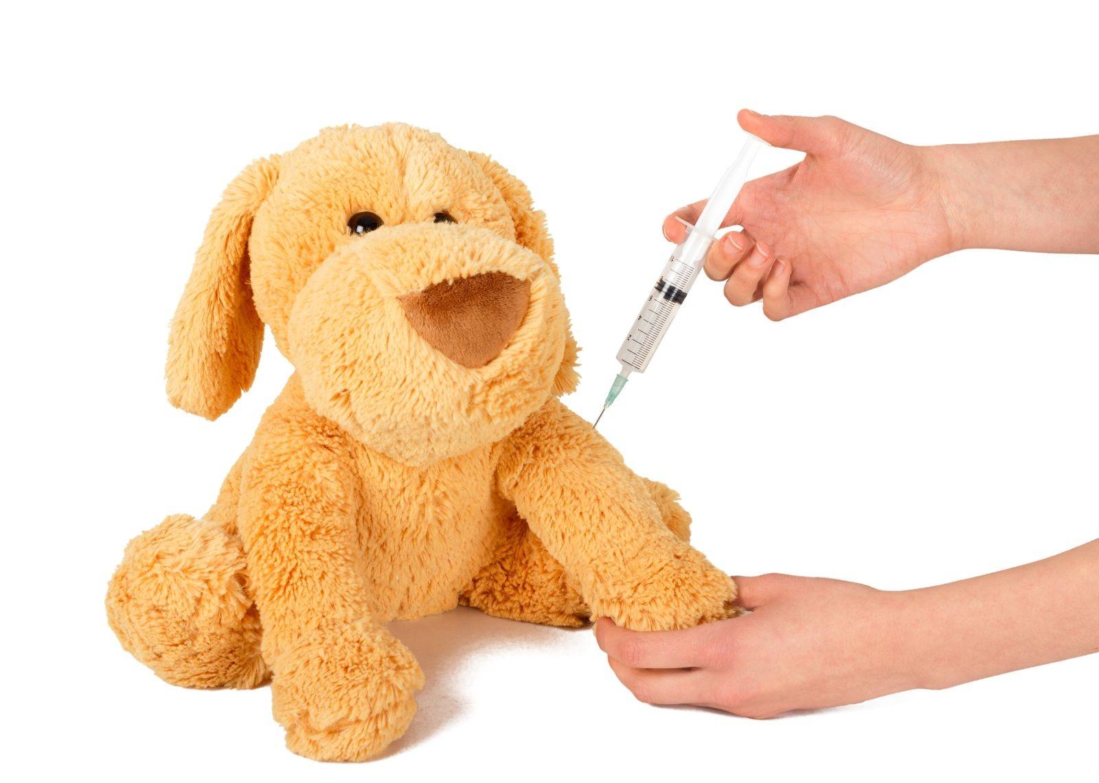 "Pediatra ""aplica"" vacuna protectora a perro de peluche"