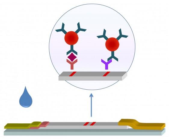 Ilustración de la muestra de papel