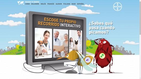 Portada del sitio web de 4º Conferencia Web sobre el Impacto de las Enfermedades Transmitidas por Vectores en Animales de Compañía y Seres Humanos